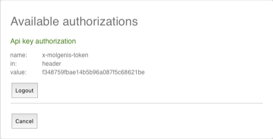 Api key authorization